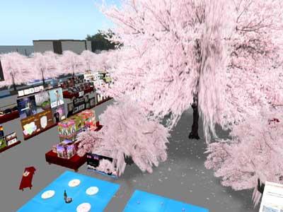 桜の大樹1